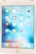 APPLE iPad Mini 4 16GB 4G