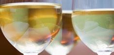 Vinotecas: por qué y para qué