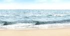 Vota por tu playa favorita